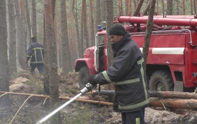 Названа вероятная причина пожаров в Житомирской области