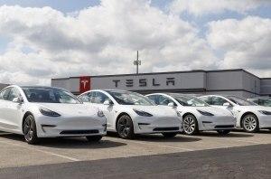 Змеи против Tesla